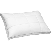 Blue Ridge Home Fashions Zurich White Goose Feather Down Quilted Compartment Pillow
