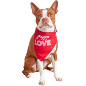 Petco Bond & Co. Puppy Love Bandana