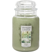 Yankee Candle Afternoon Escape Large Jar Candle