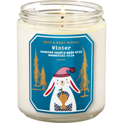 Bath & Body Works Nordic: Single Wick Candle Winter