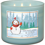Bath & Body Works Nordic Critters: 3 Wick Candle Snowflakes and Citrus