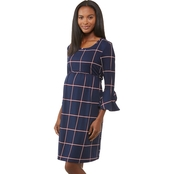 Planet Motherhood Maternity Empire Waist Dress