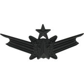 Air Force Senior Space Command Badge Sta-Black, Pin-On, Regular Size