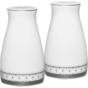 Noritake Rochester Platinum 3 1/4 in. Salt and Pepper Shakers
