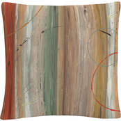 Trademark Fine Art Lisa Audit Spiced II Decorative Throw Pillow