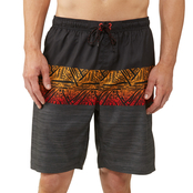 Burnside Boardshorts