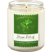 Bath & Body Works Single Wick Candle Eucalyptus Spearmint