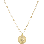 Panacea Goldtone 14.25 in. Coin Necklace