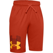 Under Armour Boys UA Prototype Logo Shorts