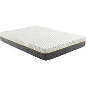 Corsicana Early Bird 10 in. Hybrid Memory Foam and Spring Mattress