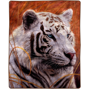 Lavish Home Oversized Woven White Tiger Plush Throw Blanket