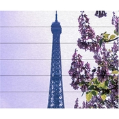 Trademark Fine Art Kathy Yates Eiffel Tower with Blossoms Wood Slat Art