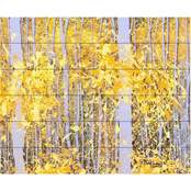 Trademark Fine Art Roderick Stevens PanorAspens Grey Forest Wood Slat Art