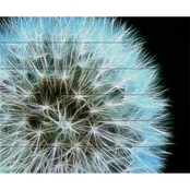 Trademark Fine Art Kathie McCurdy Dandelion Seed Head Full Wood Slat Art
