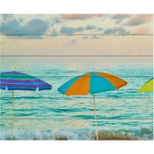 Trademark Fine Art Preston 'Florida Party of Five' Wood Slat Art