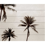 Trademark Fine Art Preston 'Black & White Palms' Wood Slat Art