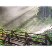 Trademark Fine Art Pierre Leclerc 'Forest Sunlight' Wood Slat Art