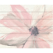 Trademark Fine Art Chris Paschke Blush Clematis I Wood Slat Art
