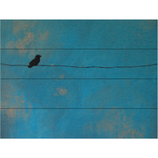 Trademark Fine Art Nicole Dietz Lone Bird Blue Wood Slat Art