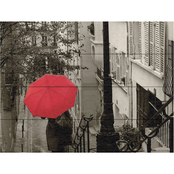Trademark Fine Art Sue Schlabach Paris Stroll II Wood Slat Art
