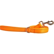 Good2Go Reflective Padded Leash, 6 ft.