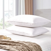 Martha Stewart Collection 2 pk. Feather And Down Pillow Set