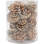 Gigi Seasons 20 ct. Pine Cone Ornament Set