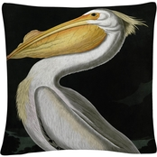 Trademark Fine Art John James Audubon American White Pelican Throw Pillow