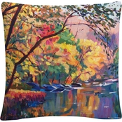 Trademark Fine Art David Lloyd Glover Color Reflections Throw Pillow