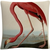 Trademark Fine Art John James Audobon American Flamingo Throw Pillow