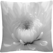 Trademark Fine Art PIPA Fine Art Infrared Flower 2 Decorative Throw Pillow