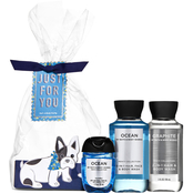 Bath & Body Works Gift Set: Mini pocketbac Cello, Graphite  & Ocean