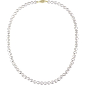 Sofia B. Japanese Akoya Cultured Pearl Strand Necklace with 14K Gold Clasp