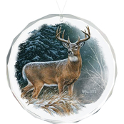 Wild Wings Deer In the Storm Round Beveled Edge Glass Ornament