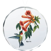 Wild Wings Ruby Throated Hummingbird Oval Beveled Edge Glass Ornament