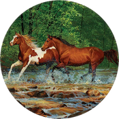 Wild Wings Spring Creek Run Horses Set of 4 Coasters