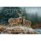 Wild Wings Strength Whitetail Deer Wood Sign 18 x 12