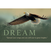 Wild Wings Dream Eagle Wood Sign 18 x 12