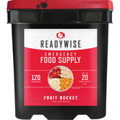 Wise Company ReadyWise Freeze Dried Fruit Bucket 120 srv.