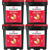 Wise Company ReadyWise Freeze Dried Fruit Bucket 480 Serving, 120 serving, 4 each