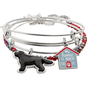 Alex and Ani Home is Where the Paw is Set of 3 Bracelets