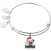 Alex and Ani Color Infusion Bah Humpug Bracelet