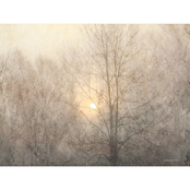 Inkstry Fading Trees Sunlight Canvas Print
