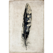 Inkstry Feather III Canvas Print