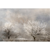 Inkstry Winter Frost Canvas Print