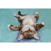 Trademark Fine Art Pat Saunders-White Little Napper Canvas Art