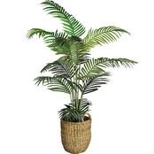LCG Florals Areca Palm Tree in Basket