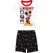 Disney Toddler Boys Mickey Mouse Funny Faces Shorts and Tee 2 pc. set