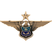 Air Force Senior Officer Inter-American Bronze Badge, Pin-On