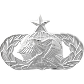 Air Force Senior Logistics Badge, Pin-On, Mid-Size, Mirror Finish